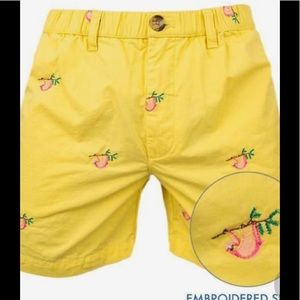 Chubbies medium yellow sloth shorts *rare*